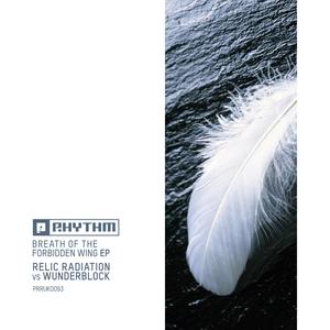 RELIC RADIATION vs WUNDERBLOCK - Breath Of The Forbidden Wing