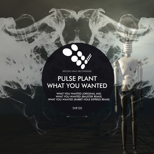 PULSE PLANT - What You Wanted