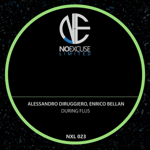 ENRICO BELLAN/ALESSANDRO DIRUGGIERO - During Flus