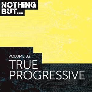 VARIOUS - Nothing But... True Progressive Vol 03