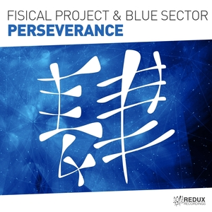 FISICAL PROJECT & BLUE SECTOR - Perseverance