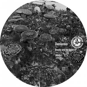 DANILENKO - Beauty And The Boost