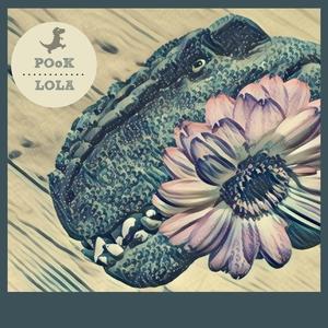 POOK - Lola