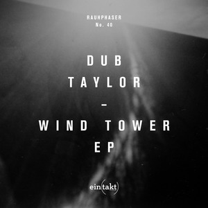 DUB TAYLOR - Wind Tower