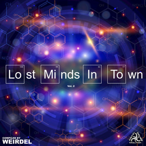 VARIOUS - Lost Minds In Town Vol 2