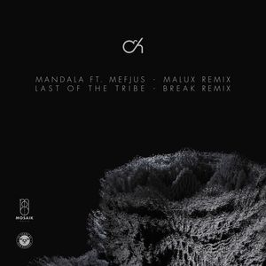 CAMO & KROOKED - Mandala (Malux Remix) / Last Of The Tribe (Break Remix)