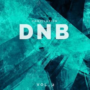 VARIOUS - DnB Compilation Vol 2