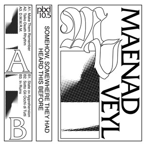 MAENAD VEYL - Somehow, Somewhere They Had Heard This Before