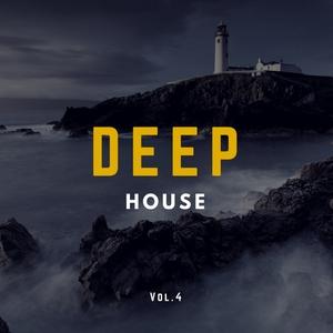 VARIOUS - Deep House Music Vol 4
