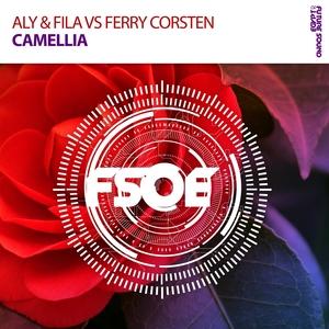 ALY & FILA vs FERRY CORSTEN - Camellia