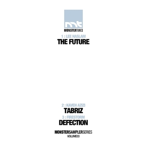 DIGITAL NATURE/BRISKY/STONEFACE/TERMINAL/WILL B/LEE HASLAM/KAVEH AZIZI/FIRESTORM - Monster Sampler Series