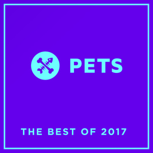 VARIOUS - PETS Recordings The Best Of 2017