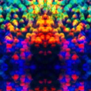 LEMON LIGHTS - Drowning In Motions