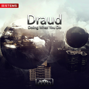 DRAUD - Doing What You Do