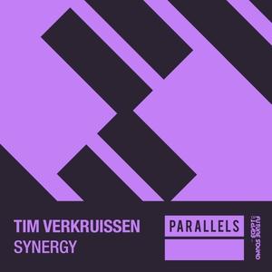 TIM VERKRUISSEN - Synergy