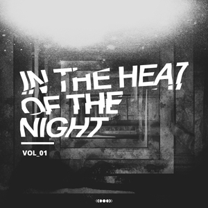 VARIOUS - In The Heat Of The Night Vol 1