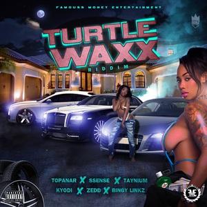VARIOUS - Turtle Waxx Riddim