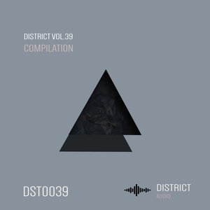 VARIOUS - District 39