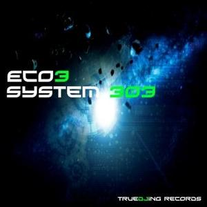 ECO3 - System 303