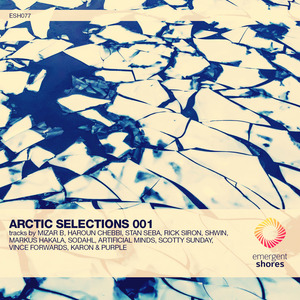 VARIOUS - Arctic Selections 001