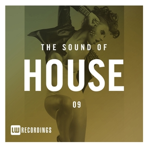 VARIOUS - The Sound Of House Vol 09