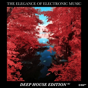 VARIOUS - The Elegance Of Electronic Music - Deep House Edition #2