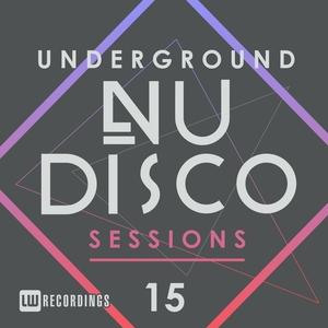 VARIOUS - Underground Nu-Disco Sessions Vol 15