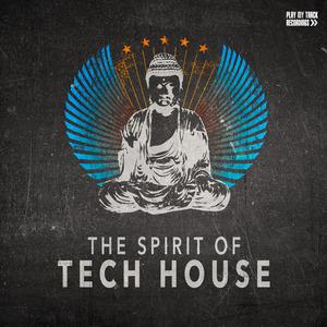 VARIOUS - The Spirit Of Tech House