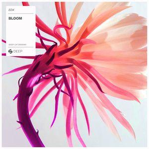 EDX - Bloom