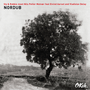 SLY & ROBBIE/NILS PETTER MOLVAER - If I Gave You My Love