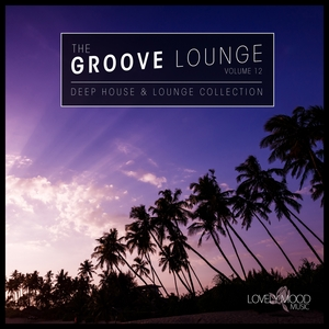 VARIOUS - The Groove Lounge Vol 12