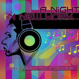 VARIOUS - A Night In New York