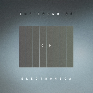 VARIOUS - The Sound Of Electronica Vol 09