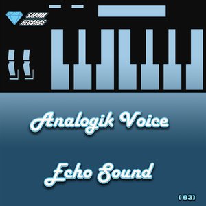 ANALOGIK VOICE - Echo Sound
