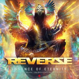DA TWEEKAZ/VARIOUS - Reverze 2018 Essence Of Eternity (unmixed tracks)