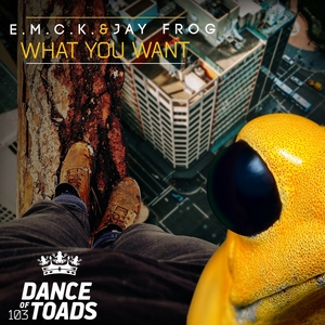 EMCK & JAY FROG - What You Want