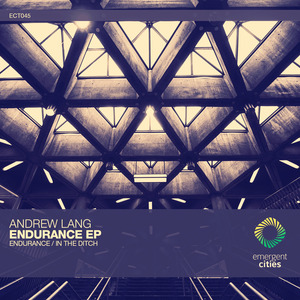 ANDREW LANG - Endurance/In The Ditch