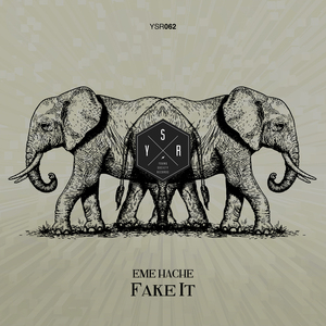 EME HACHE - Fake It
