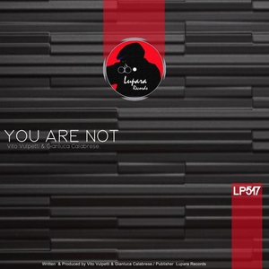 GIANLUCA CALABRESE/VITO VULPETTI - You Are Not