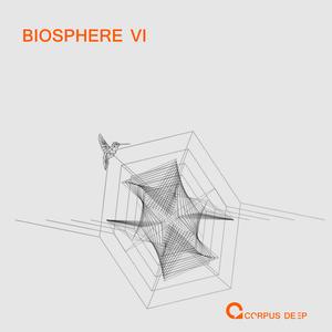 FOLLOWING LIGHT - Biosphere 6