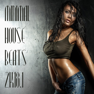 VARIOUS - Minimal House Beats 2k18 Vol 1