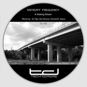 ENTROPY FREQUENCY - A Waking Dream