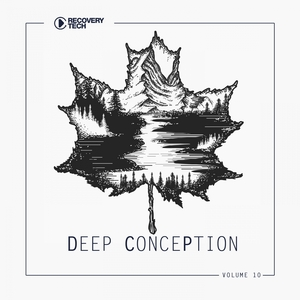 VARIOUS - Deep Conception Vol 10