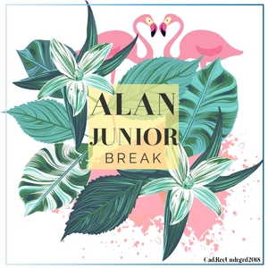 ALAN JUNIOR - Break