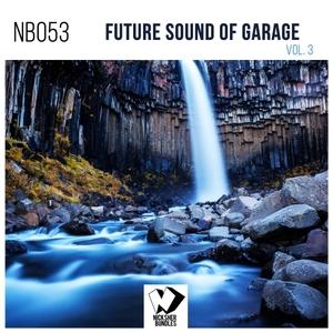 VARIOUS - Future Sound Of Garage Vol 3