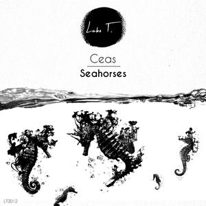 CEAS - Seahorses