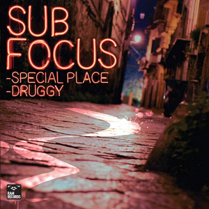 SUB FOCUS - Special Place/Druggy