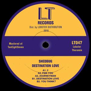 SHEDBUG - Destination Love