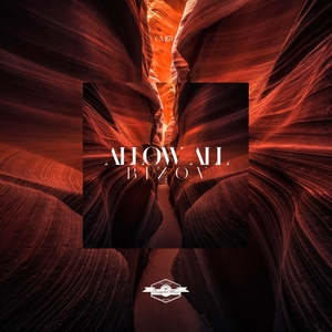 BIZOV - Allow All