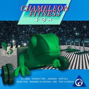 VARIOUS - Chameleon Fitness